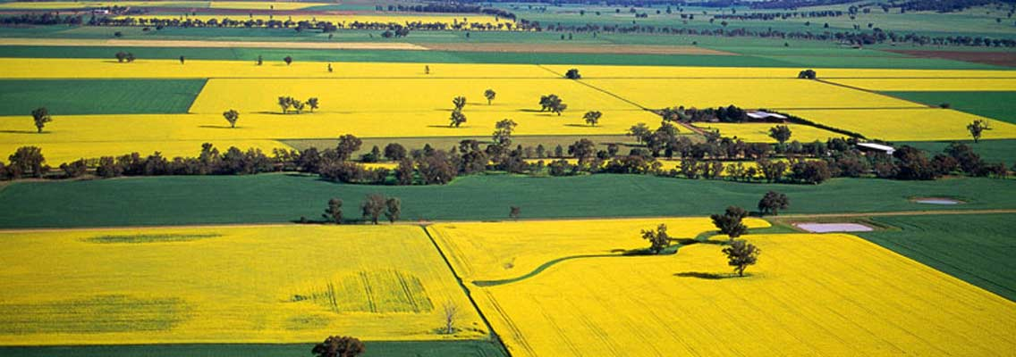 Agriculture Cowra Central West NSW